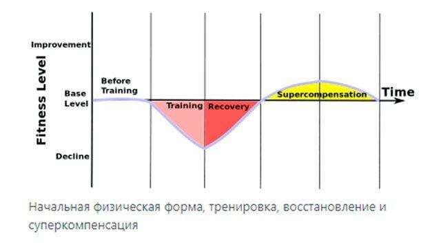 Суперкомпенсация: что это и как её использовать